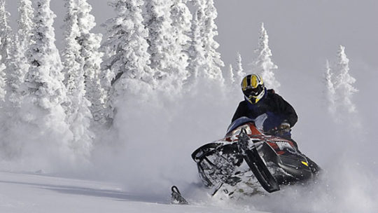 snowmobiling activities in jackson hole winter