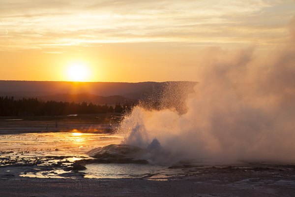 Geyser At Lower Geyser Basin In Yellowstone National Park Erupts At Sunset