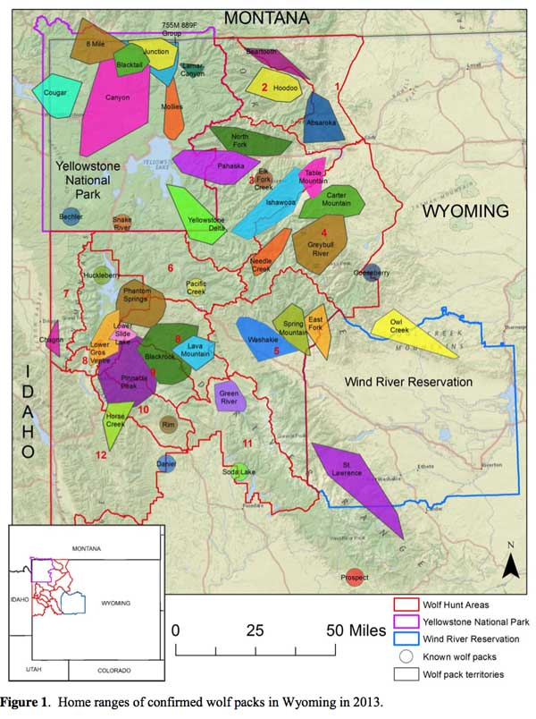 Why wolf hunting in wyoming is bad for business jackson for Wyoming game and fish maps