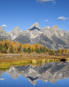The Grand Teton Mountain Range Is Reflected In The Snake River