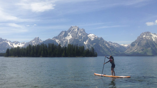 A Paddle Boarder Glides Across Jackson Lake In Front Of The Grand Tetons