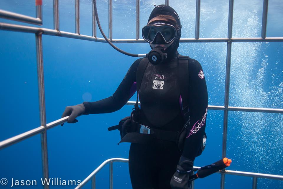 Office manager Carrie Wild on the lookout for great whites (this was her first scuba experience and she passed her discover scuba challenges while in a cage surrounded by sharks!) Image by Jason Williams