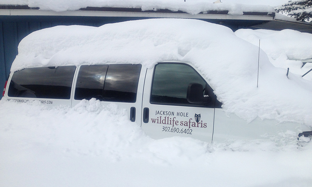 A Jackson Hole Wildlife Safaris Van Sits Buried In The Snow After A Winter Snow Storm