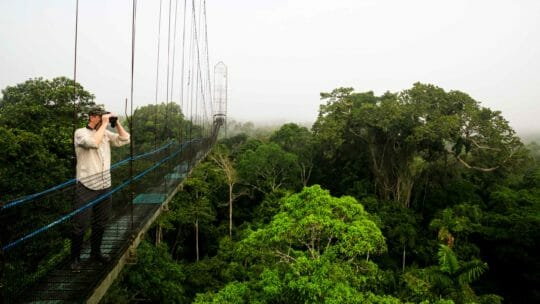 jason williams using binoculars on bridge in ecuador