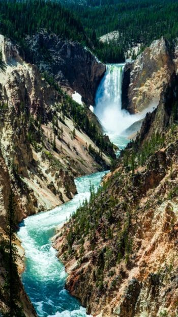 Grand Canyon of the Yellowstone Featuring Lower falls in Yellowstone National Park