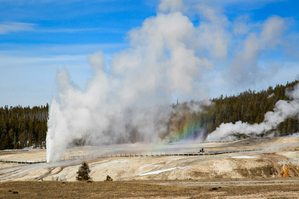 Upper Geyser Basin in Yellowstone National Park.