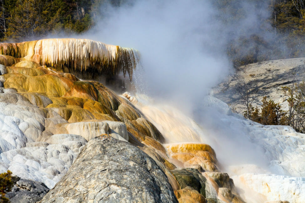 Mammoth Hotsprings in Yellowstone National Park