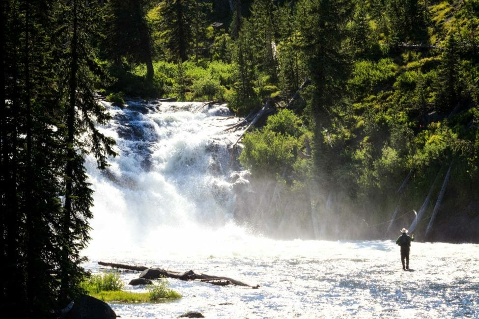 Fishing below Lewis Falls in Yellowstone National Park