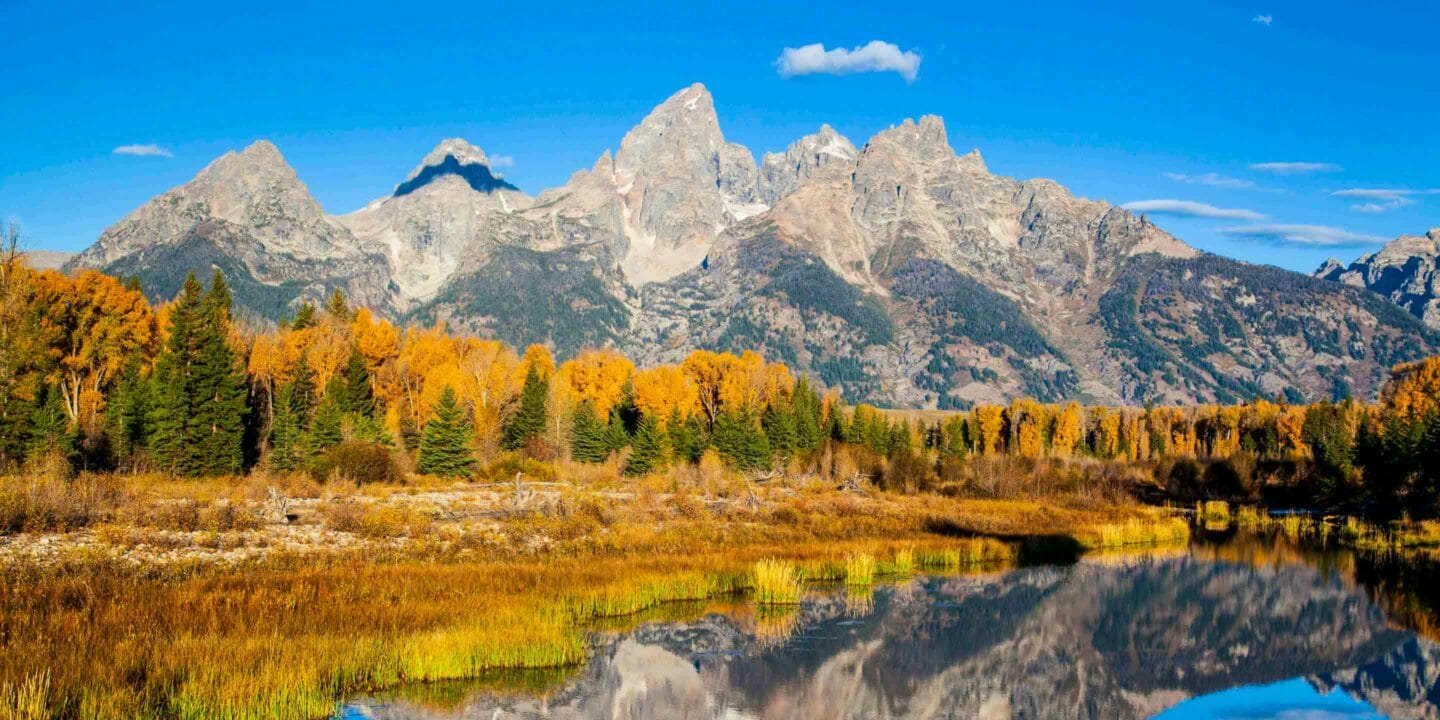 Fall colors along the Snake River with the Teton Range in the background