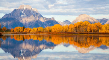 Fall colors at the Oxbow Bend of the Snake River in Grand Teton National Park.