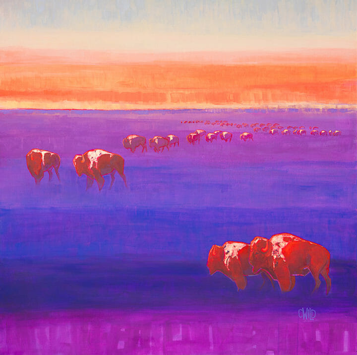 Contemporary Wildlife Art Featuring Bison And Western Landscape With Bold Colors And Gold Leaf Accents By Artist Carrie Wild at Gallery Wild