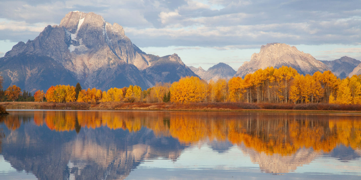 Mount Moran, An Iconic Peak In Grand Teton National Park IIs Flanked By Vibrant Fall Colors Of Yellows Red, and Orange